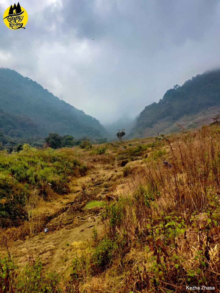 Potato farm of the Kigwema to Mt. Japfu pea trail