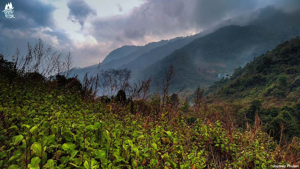 Kigwema to Mt. Japfu Peak trail